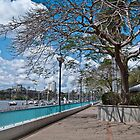 Brisbane River Promenade Queensland Australia by PhotoJoJo