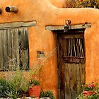 Canyon Road, Santa Fe by Barbara Muller