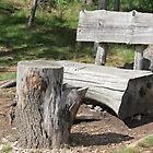Bench by karina5