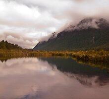 Mirror Lake Reflections by Odille Esmonde-Morgan