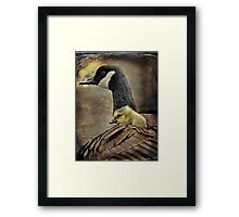 Safe from harm Framed Print