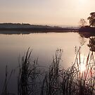 Sunrise of Serenity by Kathilee