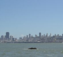 The City by the Bay Fog City by johnlimiac