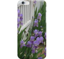 Iris Gate iPhone Case/Skin