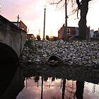 Light Post at Sunset  by Brandonleo
