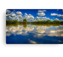 Mirrored..  Canvas Print
