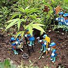 My plantation by garigots