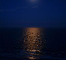 Dancing Moonlight by tigerwings
