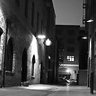 Back Alley by Benjamin Curtis