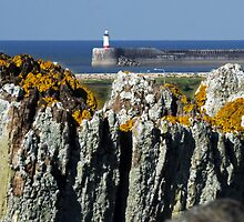 The Fencepost & the Lighthouse by mikebov