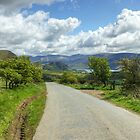 The Road To Ennerdale by Jamie  Green