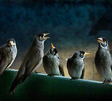five birdies on a balcony by carol brandt