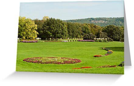 Rheinaue Park in Bonn by Vac1