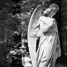Forest Angel by olga zamora