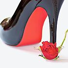 The Rose & Shoe by Fern Blacker