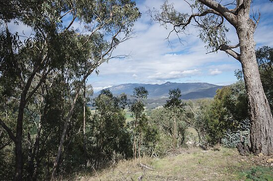 Mount Buffalo from Myrtelford Lookout 2012 04183516 by Fred Mitchell