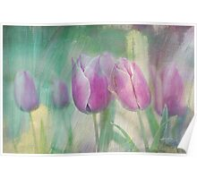 simply tulips Poster