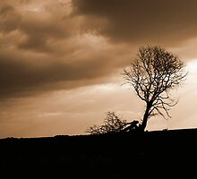 There Will Be Thunder by Shaun Colin Bell