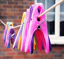 Clothes Pegs by colettelydon