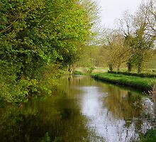spring morning by the canal by craig wilson