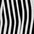 Zebra skin pattern stripes by nadil