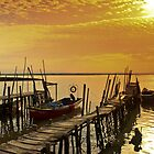 Carrasqueira II by fotomagia