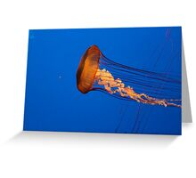 *Jellyfish* Greeting Card
