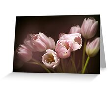 Those pink tulips Greeting Card