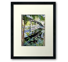 bridge over the lily pond Framed Print