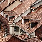 Rooftops by Irina Chuckowree