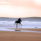silhouette of a horse and rider galloping along shore by morrbyte