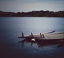 Boats on Charles River by voldy92