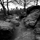 Path. Rock. Central Park. by Amanda Vontobel Photography