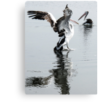 pelicanlanding Canvas Print