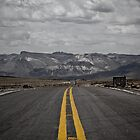 Pan-American Highway by Michael Telfer