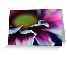 Mother's Day Daisy Greeting Card