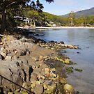 Beautiful Tasmania by georgieboy98