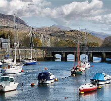 The Harbour ! by Irene  Burdell