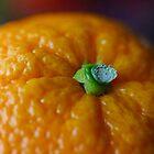 Orangy Wrinkles by Ersu Yuceturk
