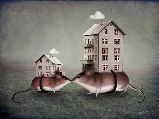 Your place or mine? by Catrin Welz-Stein