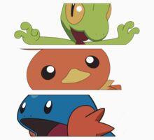 Pokemon - starters 3rd gen by Falconpaunch
