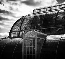Kew Gardens glasshouse by Darren Sharp