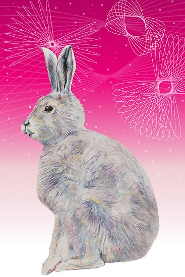 Spirostars - Arctic Hare by Hannah Marechal