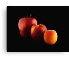 Fruits Lineup Canvas Print