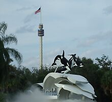 Seaworld - Florida by PaulRoberts