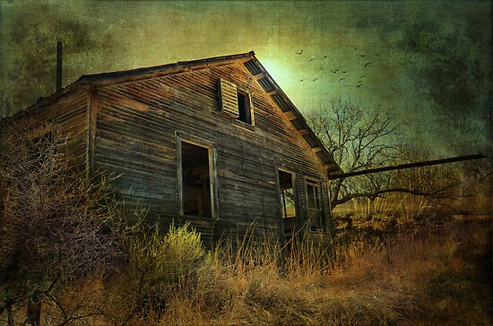 Ghost Town USA by Barbara Manis