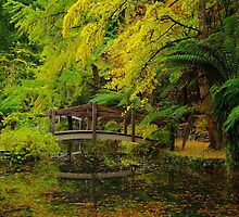Tranquil Garden. by Bette Devine