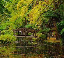 Tranquil Garden. by Bette Devine