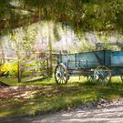 Country - The old wagon out back  by Mike  Savad
