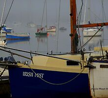 Irish Mist by Charmiene Maxwell-batten